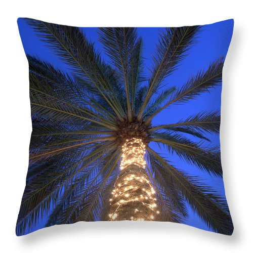 Tranquility Throw Pillow featuring the photograph Moonrise Near Lit-up Palm Tree by Grant Faint