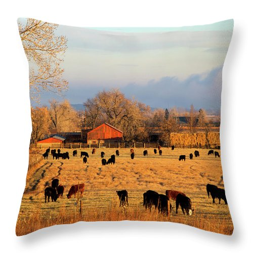 Scenics Throw Pillow featuring the photograph Morning Farm Scene by Beklaus