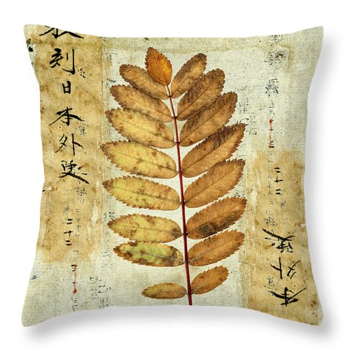 Leaves Throw Pillow featuring the mixed media Mountain Ash Leaves by Carol Leigh