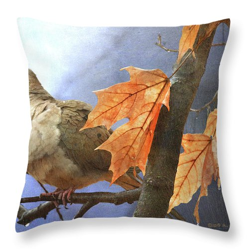 Mourning Throw Pillow featuring the photograph Mourning Dove Rainy Morn by R christopher Vest