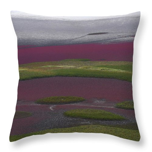 Scenics Throw Pillow featuring the photograph Mud Flats At Suncheon Bay by Photography By Simon Bond