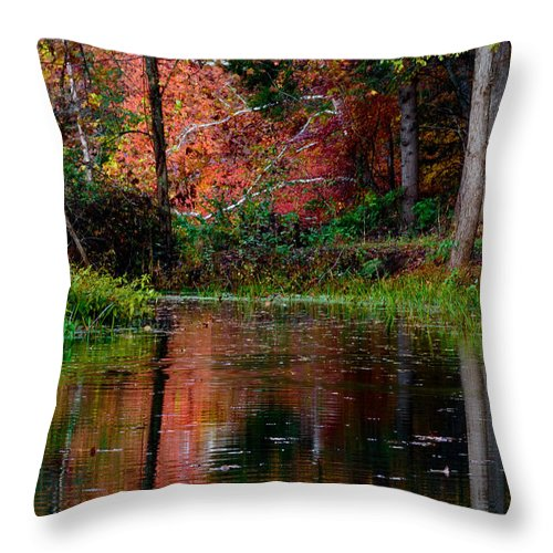 Landscape Throw Pillow featuring the photograph My Secret Place by Kristi Swift