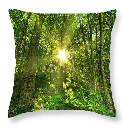 Life Throw Pillow featuring the photograph My Secret Place by Phil Koch