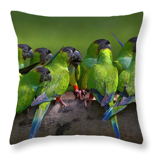 Vertebrate Throw Pillow featuring the photograph Nanday Parakeets Perched In A Row In by Mint Images - Art Wolfe