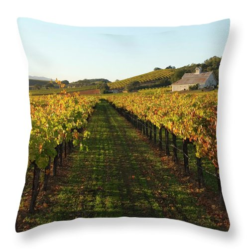 Scenics Throw Pillow featuring the photograph Napa Valley Vineyard In Autumn by Leezsnow