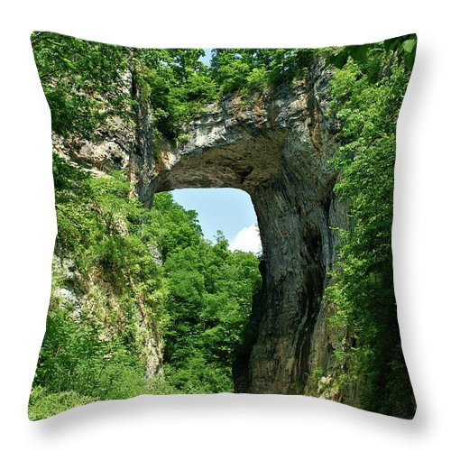 Landscape Throw Pillow featuring the photograph Natural Brige by Eric Pearson