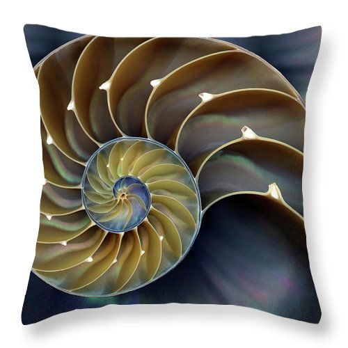 Cephalopod Throw Pillow featuring the photograph Nautilus by 0049-1215-16-2610334597
