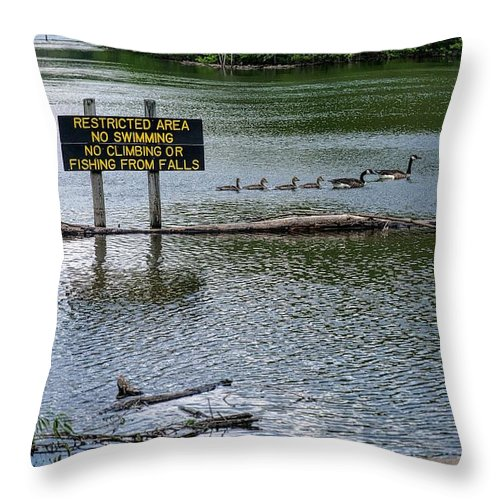 Water Throw Pillow featuring the photograph No Swimming by Kristi Swift
