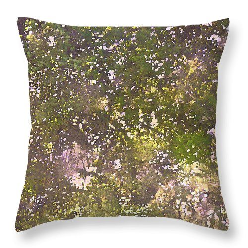 Tree Throw Pillow featuring the photograph Oaks 26 by Pamela Cooper