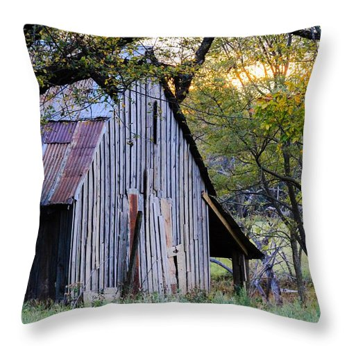 Rustic Barn Throw Pillow featuring the photograph Okie Shelter by Torie Morris