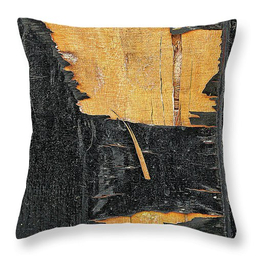 Abstract Throw Pillow featuring the photograph Old Wood Texture by Tom Gowanlock