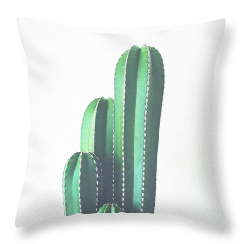 Cactus Throw Pillow featuring the photograph Organ Pipe Cactus by Cassia Beck