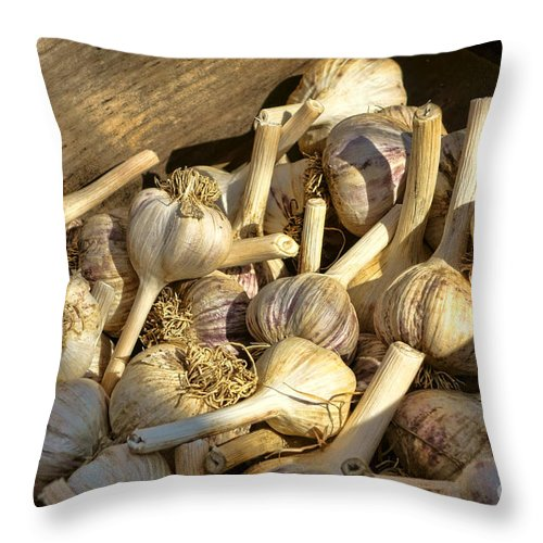 Garlic Throw Pillow featuring the photograph Organic Garlic by Olivier Le Queinec