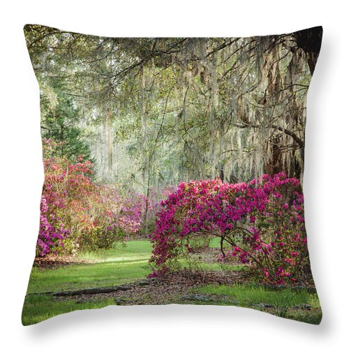 South Carolina Throw Pillow featuring the photograph Paintely Garden by Iris Greenwell