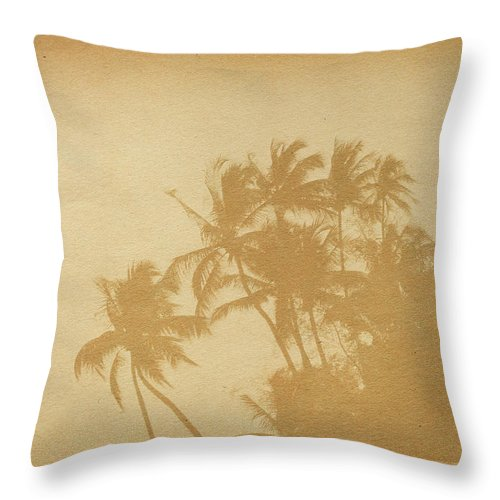 Aging Process Throw Pillow featuring the photograph Palm Paper by Nic taylor