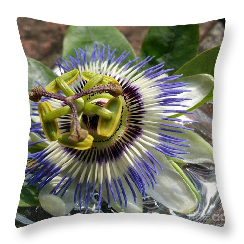 Throw Pillow featuring the photograph Passionflower by Paola Baroni