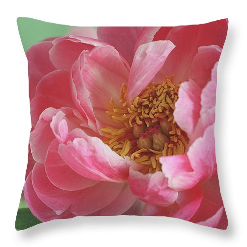 California Throw Pillow featuring the photograph Peony by © 2011 Staci Kennelly