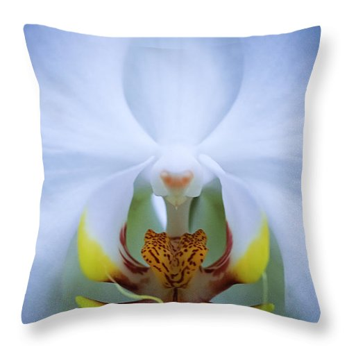 Outdoors Throw Pillow featuring the photograph Phalaenopsis Orchid by By Ken Ilio