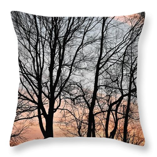 Trees Throw Pillow featuring the photograph Pink Sky by Cassidy Marshall