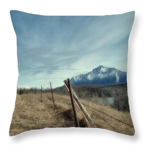 Alaska Throw Pillow featuring the photograph Pioneer 1 by Carey Smith