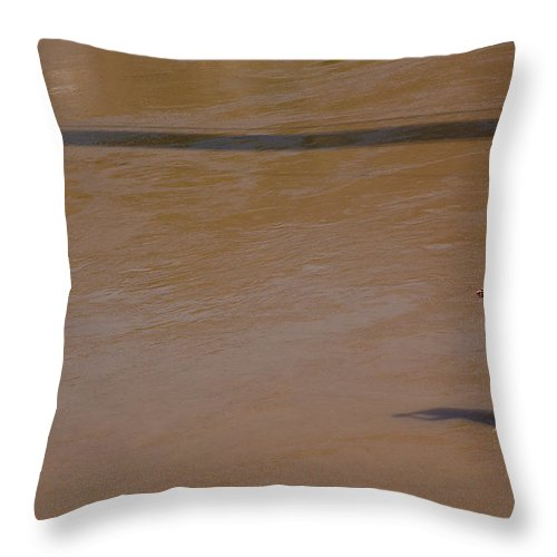 Hinduism Throw Pillow featuring the photograph Praying On Banks Of Holy Ganges In by Claude Renault