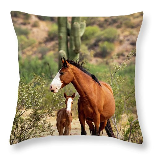 Arizona Throw Pillow featuring the photograph Pretty Mama by Cathy Franklin