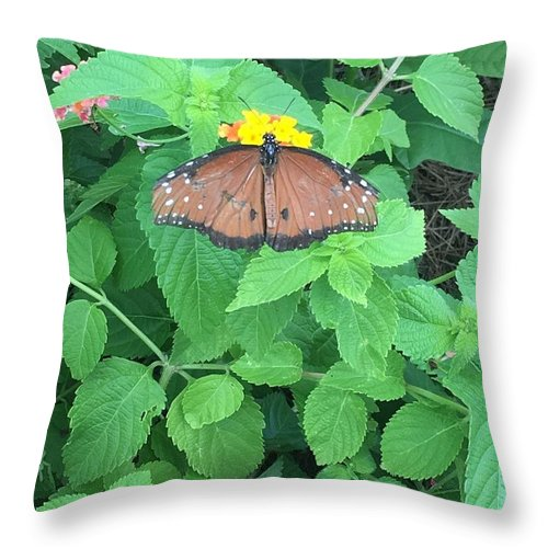 Throw Pillow featuring the photograph Promotion by Gewanda Parker
