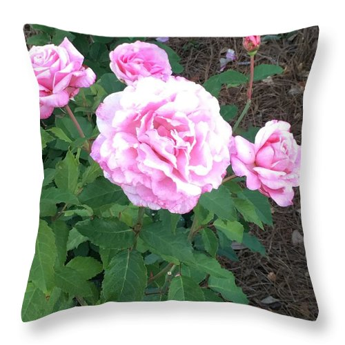 Throw Pillow featuring the photograph Queen Different by Gewanda Parker