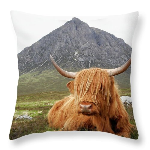 Horned Throw Pillow featuring the photograph Quintessential Scotland by Thedman