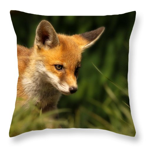 Alertness Throw Pillow featuring the photograph Red Fox Cub In The Grass by Chris Jolley