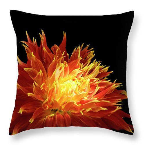 Firework Display Throw Pillow featuring the photograph Red-yellow Dahlia Flower by Eyepix