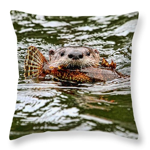 River Otter Throw Pillow featuring the photograph River Otter With Greenling Fish by Peggy Collins