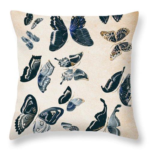 Antique Throw Pillow featuring the photograph Scrapbook Butterflies by Jorgo Photography - Wall Art Gallery