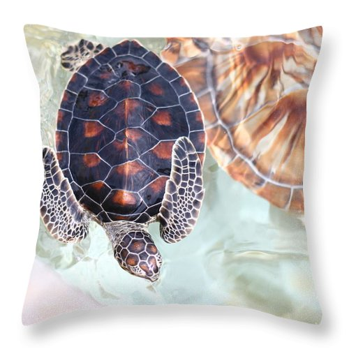 Underwater Throw Pillow featuring the photograph Sea Turtle by Alyssa B. Young