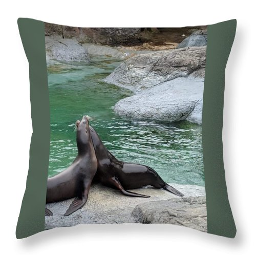 Blue Throw Pillow featuring the photograph Seal by Aswini Moraikat Surendran