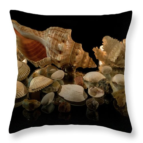Corals Throw Pillow featuring the photograph Seashells by Mila Vasileva