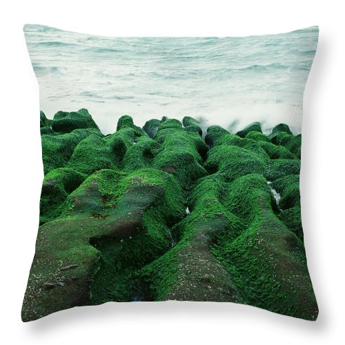 Scenics Throw Pillow featuring the photograph Seaweed by Tsun