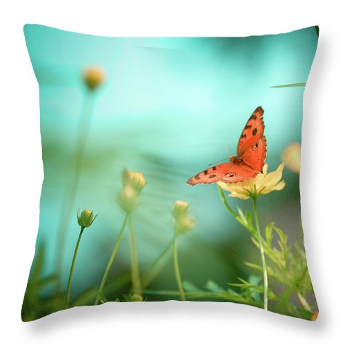 Animal Themes Throw Pillow featuring the photograph She Rests In Beauty by Patricia Ramos