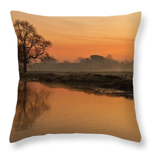 Scenics Throw Pillow featuring the photograph Sheep Sunrise by Paulscreen