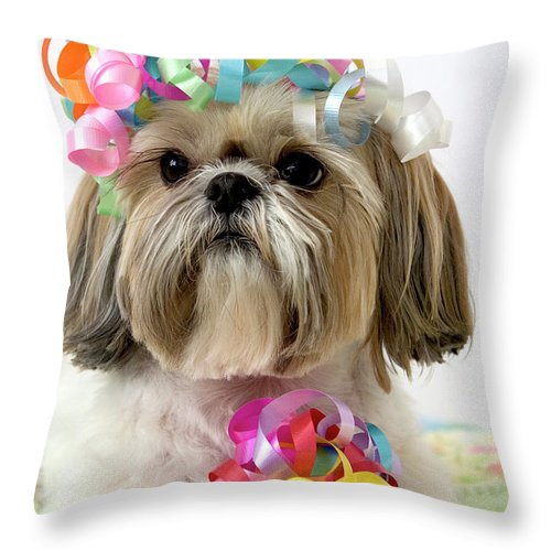 Pets Throw Pillow featuring the photograph Shih Tzu Dog by Geri Lavrov