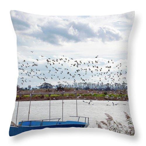 Scenics Throw Pillow featuring the photograph Simeto River, Catania Sicily by Francesco Cantone