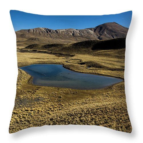 Tranquility Throw Pillow featuring the photograph Small Lagoon In Condoriri National Park by © Santiago Urquijo