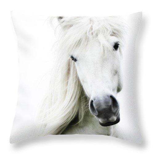 Horse Throw Pillow featuring the photograph Snowhite by Gigja Einarsdottir