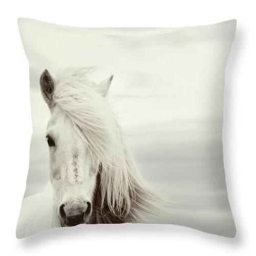 Horse Throw Pillow featuring the photograph ísold by Gigja Einarsdottir