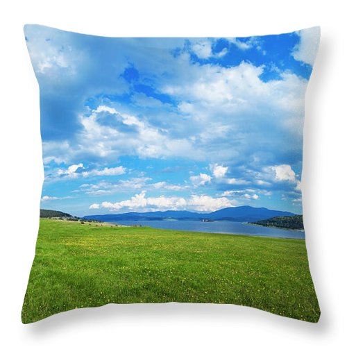 Scenics Throw Pillow featuring the photograph Spring Flowers And Blue Sky by Eli asenova
