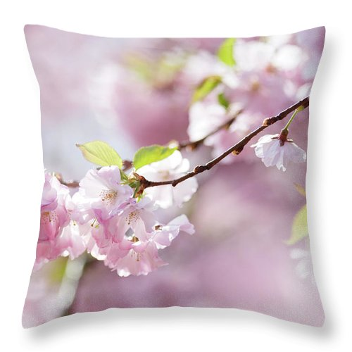 People Throw Pillow featuring the photograph Spring by Goldhafen