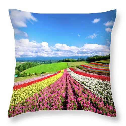 Tranquility Throw Pillow featuring the photograph Summer Of Furano by Grace's Photo