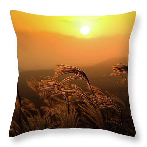 Tranquility Throw Pillow featuring the photograph Sunset, Reeds And Wind by Douglas Macdonald