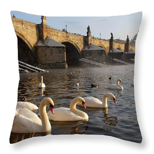 Arch Throw Pillow featuring the photograph Swans And Charles Bridge by Dibrova