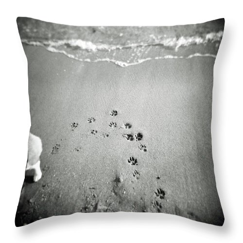 Pets Throw Pillow featuring the photograph The Beach by Moaan